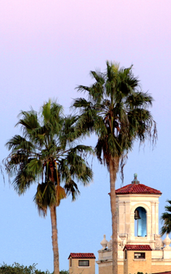Picture of the Texas A&M University-Kingsville College Hall Tower.