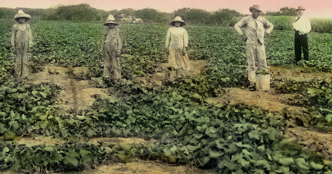Workers standing in a field for a picture.